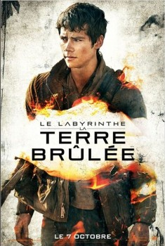 Le Labyrinthe : La Terre brûlée (2015)