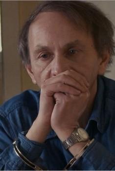 L'Enlèvement de Michel Houellebecq (2013)